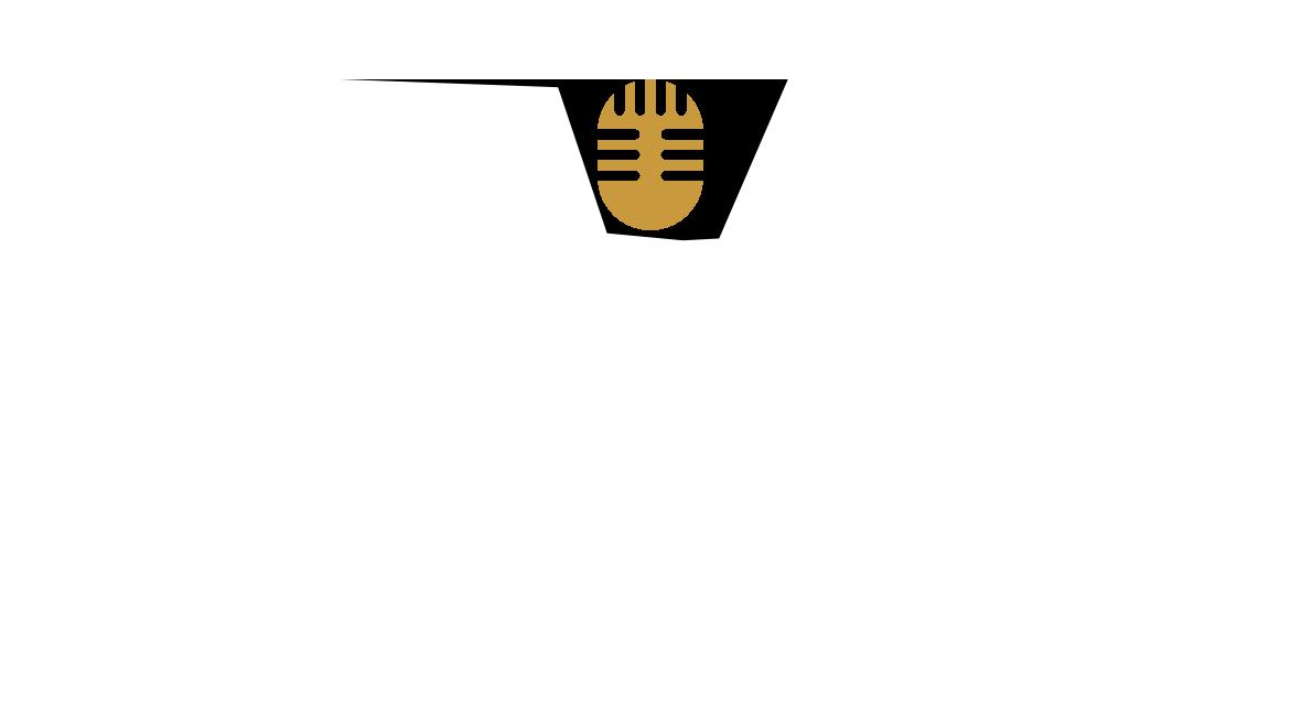 VIK box karaoke
